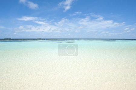 Sea and Maldives