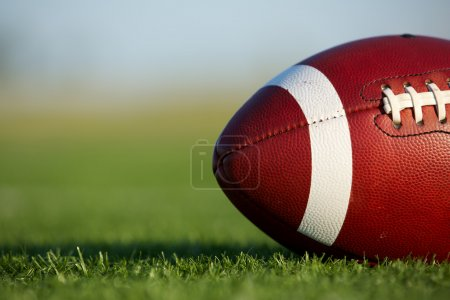 Football on the Field Close Up