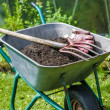 Pitch fork and gardening gloves in wheelbarrow ful...