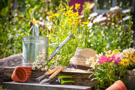 Photo for Gardening tools and a straw hat on the grass in the garden - Royalty Free Image