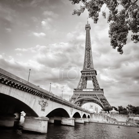 Eiffel tower monochrome square format