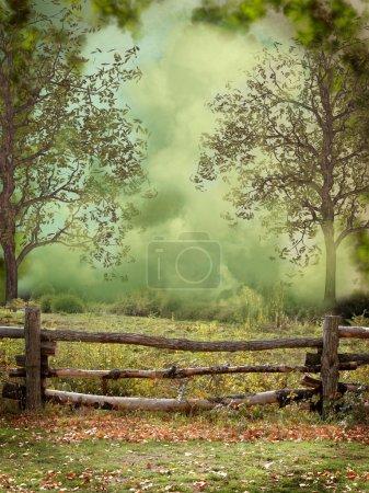 Photo pour Paysage fantastique et rêveur dans la forêt - image libre de droit