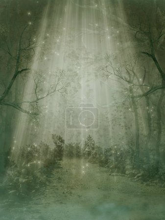 Photo for Fantasy forest with fog and big trees - Royalty Free Image