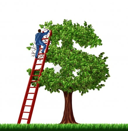 Photo pour Gestion de patrimoine et conseils financiers avec un homme d'affaires sur une échelle rouge gérant la croissance d'un arbre d'argent en forme de signe dollar sur fond blanc . - image libre de droit