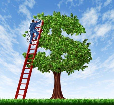 Photo pour Gérer votre gestion d'argent et de la dette avec un homme d'affaires sur une échelle en prenant soin de l'arbre qui est la forme d'un symbole dollar comme un concept financier de la croissance de la richesse et des conseils économiques. - image libre de droit