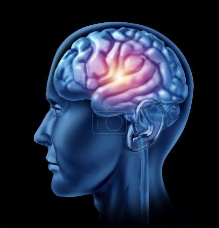 Intelligence Brain Activity