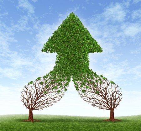 Foto de Trabajando juntos negocios símbolo y concepto de fusión financiera como dos árboles conectando y fusión como uno formando una flecha crecimiento saludable en forma de árbol como un icono del éxito del trabajo en equipo. - Imagen libre de derechos