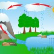 Water cycle diagram. The sun, which drives the wat...