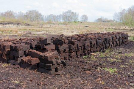 Peat digging in Dutch rural landscape