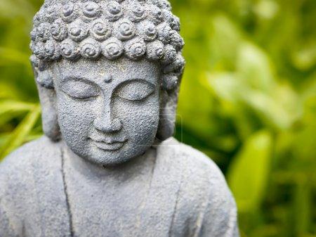 Photo pour Bouddha souriant en herbe - image libre de droit