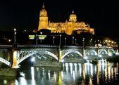 Salamanca cathedral night.