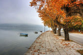 Landscape in fall autumn