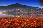 Landscape in fall autumn, city view over golden leaves