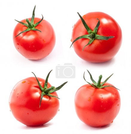 Photo for Tomatoes with a light shadows, isolated on white background - Royalty Free Image