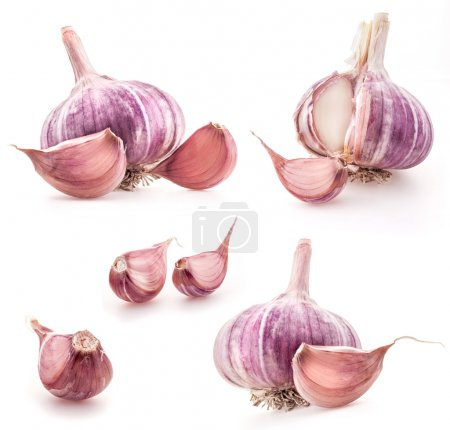 Photo for Garlic isolated on white - Royalty Free Image