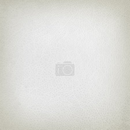 White leather texture or background