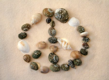 Photo pour Signe de la paix fait de coquillages différents plusieurs, fond de sable - image libre de droit