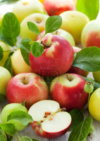 Photo for Red,green and yellow apples with leaves in the basket - Royalty Free Image