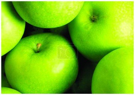 The fresh green apple