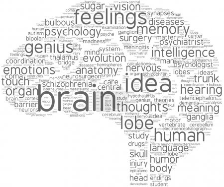 Brain tag cloud pictogram with grey words on a white background