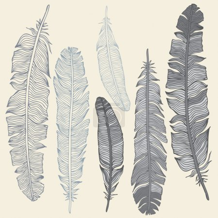 Illustration for Vintage Feather vector set. Hand drawn illustration. - Royalty Free Image