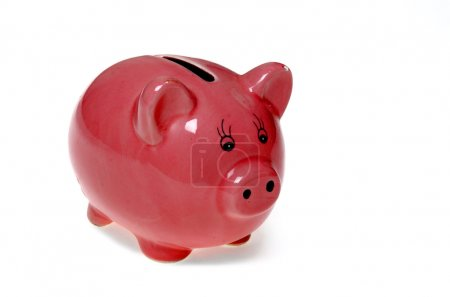 Piggy bank isolated against white