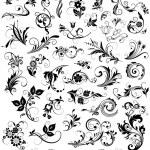 Calligraphic floral design elements...