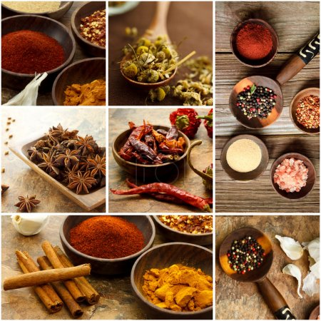 Photo for Collage of many Spices - Royalty Free Image