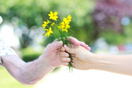 Photo for Giving yellow flowers to senior lady outside - Royalty Free Image