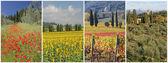 quatre saisons en Toscane