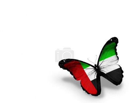 UAE flag butterfly, isolated on white background