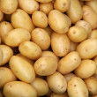 Fresh organic young potatoes sold on market...