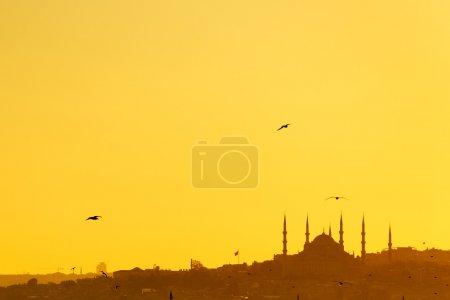 Photo pour Majestueuse mosquée au coucher du soleil au Moyen Orient - image libre de droit