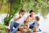 Famiglia, picnic