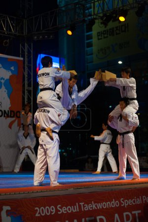 Taekwondo Double Kick MidAir Breaking