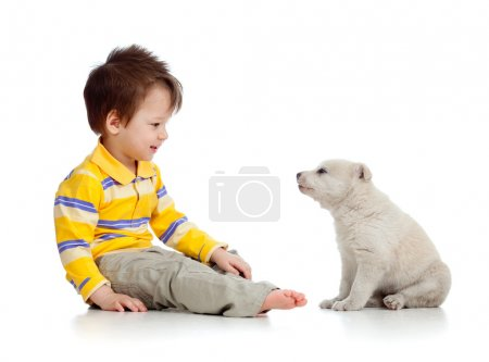 Little kid and puppy looking at each other on white background