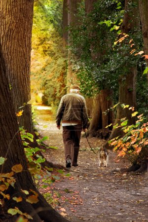 Photo for Old man walking his dog - Royalty Free Image
