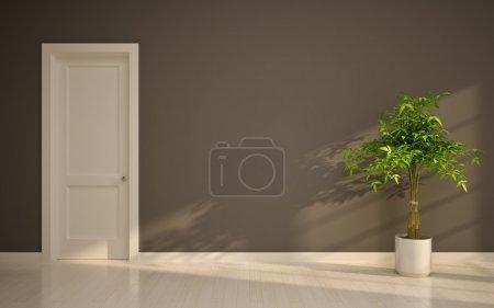 Empty interior with door & tree