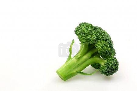 Photo for Broccoli floret on a white background - Royalty Free Image