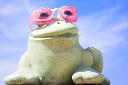 Swimmer frog