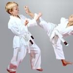 Beautiful sport karate kids...