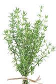 Fresh thyme herb on white