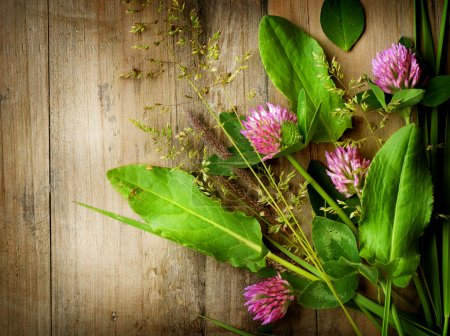 Photo for Herbs over Wood. Herbal Medicine. Herbal Background - Royalty Free Image