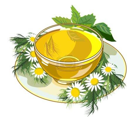 Illustration pour Belle tasse de tisane à la camomille et à la menthe - image libre de droit