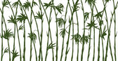 Green bamboo silhouettes on white