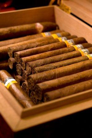Photo pour Une boîte de cigares - image libre de droit