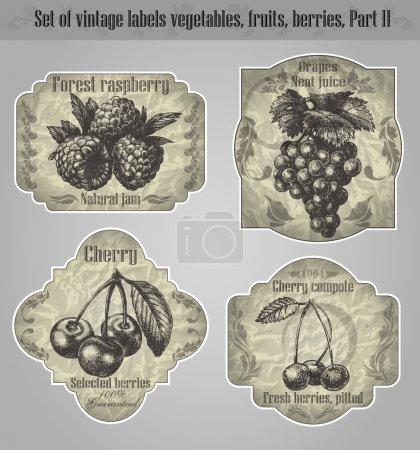 Illustration pour Ensemble vectoriel : étiquettes vintage fruits, légumes, baies - inspiré des originaux floraux rétro - image libre de droit
