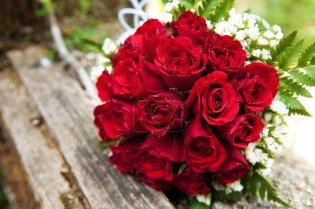 Photo pour Belles roses - image libre de droit
