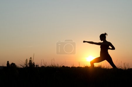 Photo for Young women training karate on sunset. - Royalty Free Image