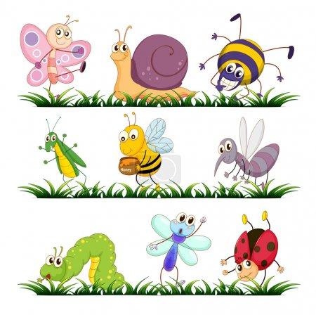 Illustration pour Illustration des insectes sur l'herbe - image libre de droit
